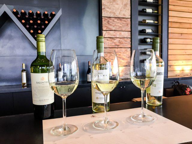Mendoza: Tiefe Schluchten, hohe Andenpässe und liebliche Weingüter