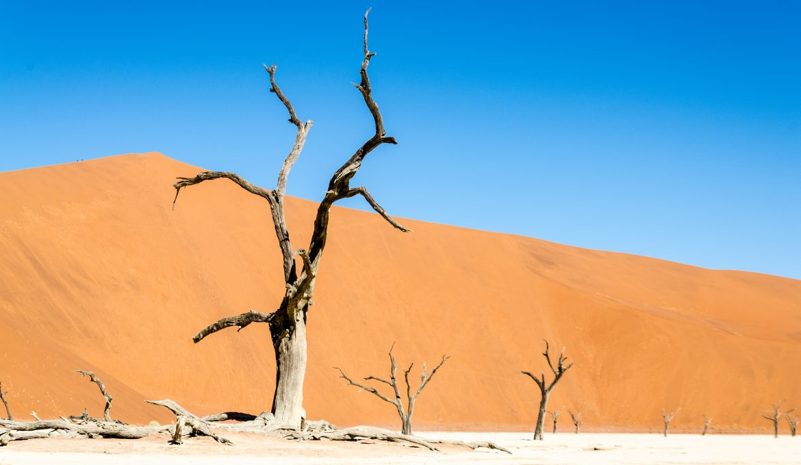 Without window-control panel into the Namib desert