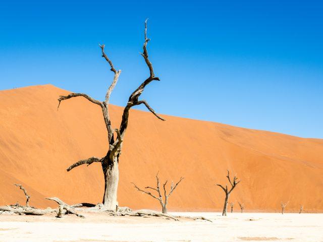 Ohne Fensterheber in die Namib-Wüste