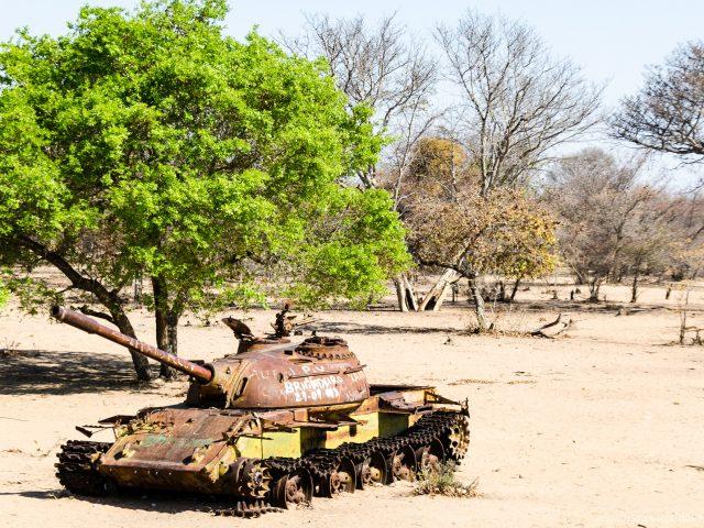 Abenteuer Angola: durch das Baobab-Land zum Kongo-Fluss