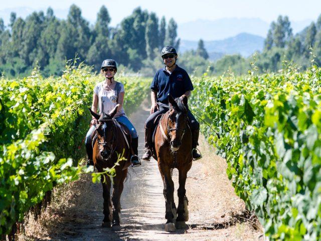 Reise-Erholung im Weingebiet Colchagua und zwei interessante Städte